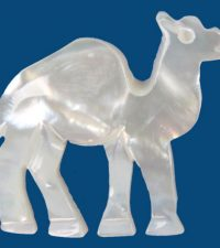 mother-of-pearl-camel