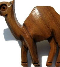 camel-pin